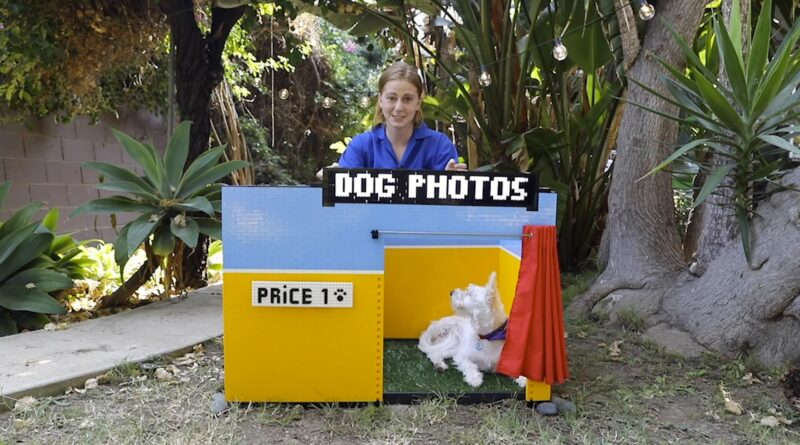 This is the DIY doggy selfie booth is the most adorable photography thing you will see this year