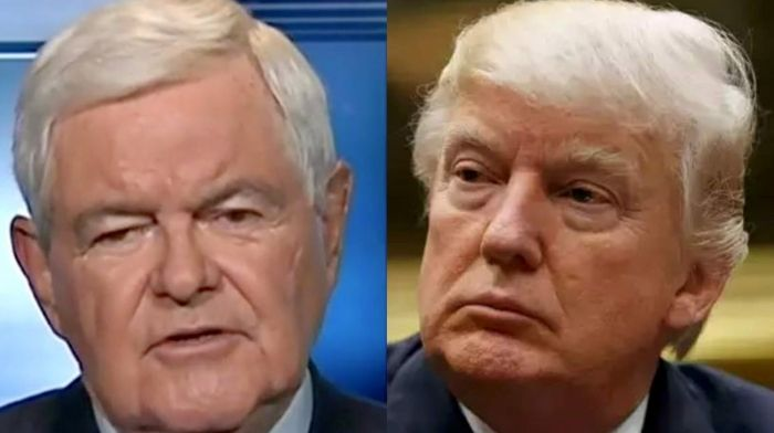 Newt Gingrich Stands By Trump – Says 2020 Election Could Be 'Biggest Presidential Theft' Since 1824