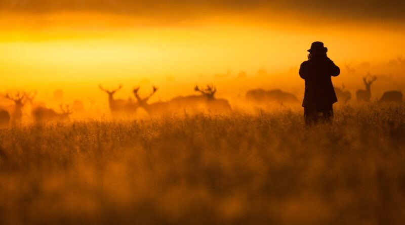The Best Photos of October