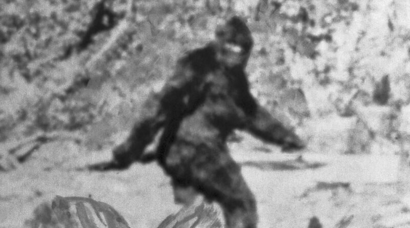 Republican lawmaker likens Trump vote-fraud crusade to the search for Bigfoot