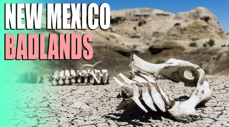 Bizarre Badlands of New Mexico & Caravaning With I'm Not Lost I'm RVing
