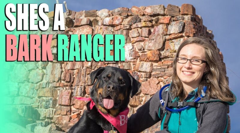 How To Take Pets On National Park Trails – Petrified Forest Bark Ranger – Full Time RV