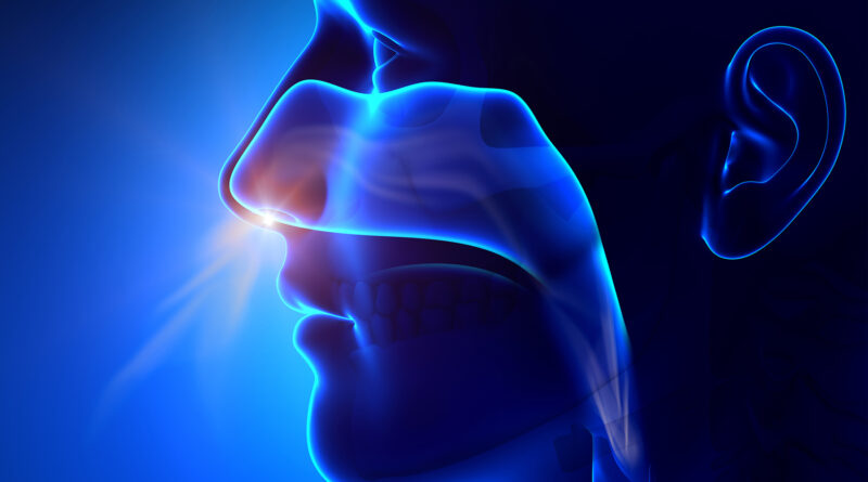 Loss of Smell From COVID Can Last Many Months