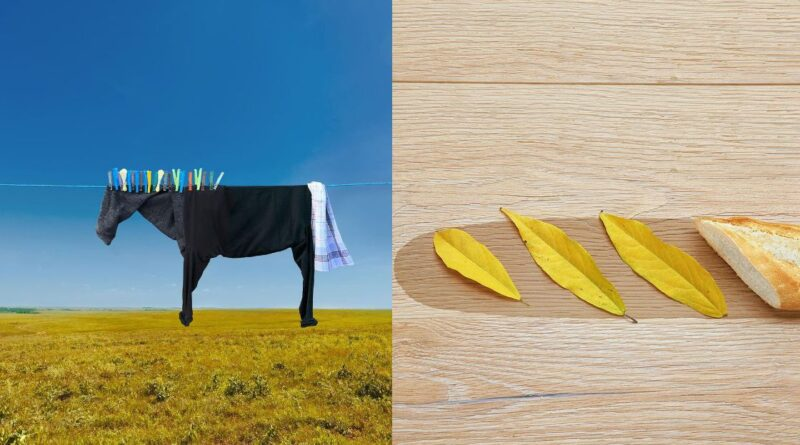 This artist turns everyday items into hilarious optical illusions