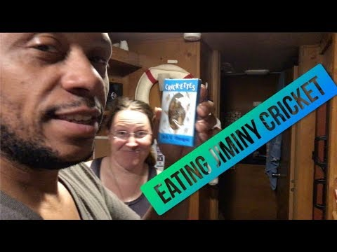 The first weeks of RV living  ~ Full time RV living ~ RV Newbies ~ POA vlog