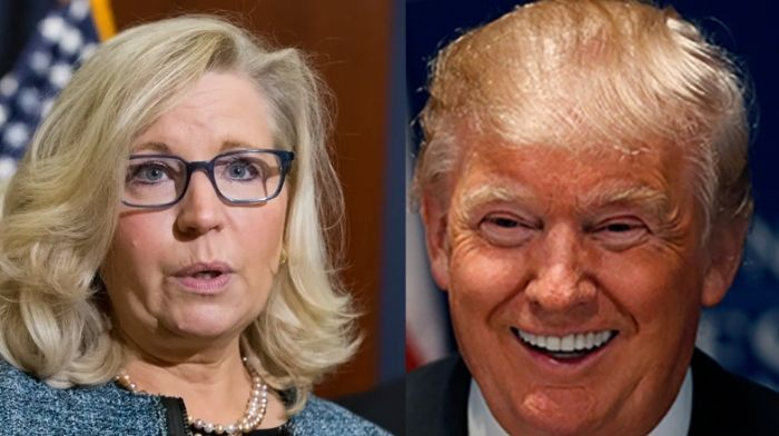 Liz Cheney Reportedly Is 'Checked Out And Already Accepting Her Fate' As Calls Grow To Oust Her