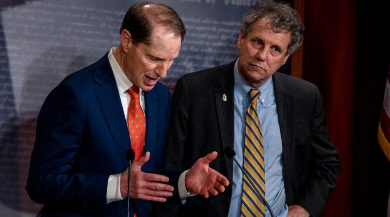 Democrats Eye Taxing Stock Buybacks and Partnerships