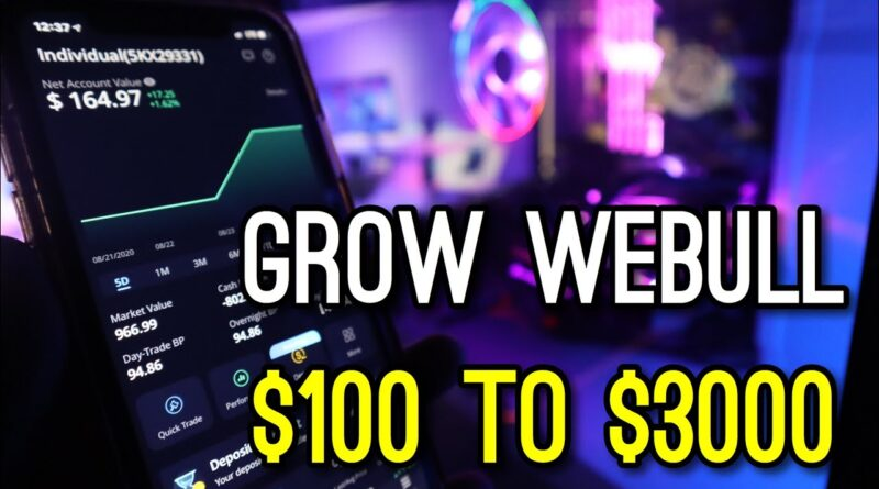 Vital Tips to Grow WeBull from $100 to $3000