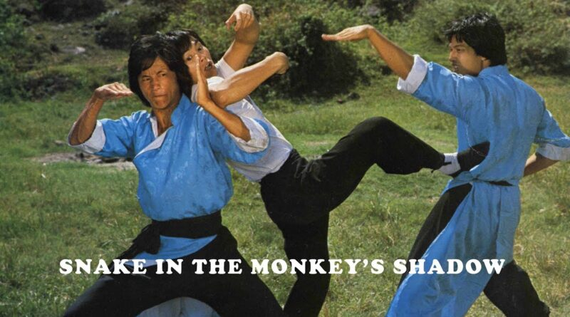 Wu Tang Collection – Snake In The Monkey Shadow