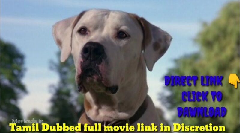 நாய்களின் அட்டகாசம் comedy scene /#full movie/# Tamil dubbed link in Discretion click To dawnload